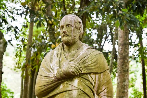 Plato in Petrópolis